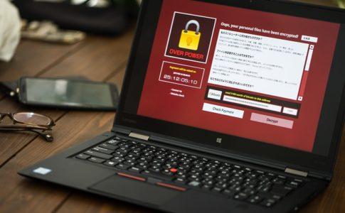 サイバー被害での企業の対応が厳格化!サイバー保険はもはや必須か